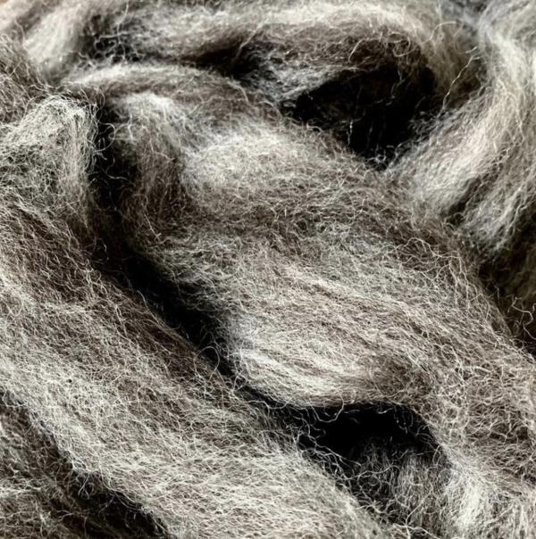 Schnauzer wool