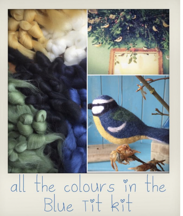 Colours of blue tit