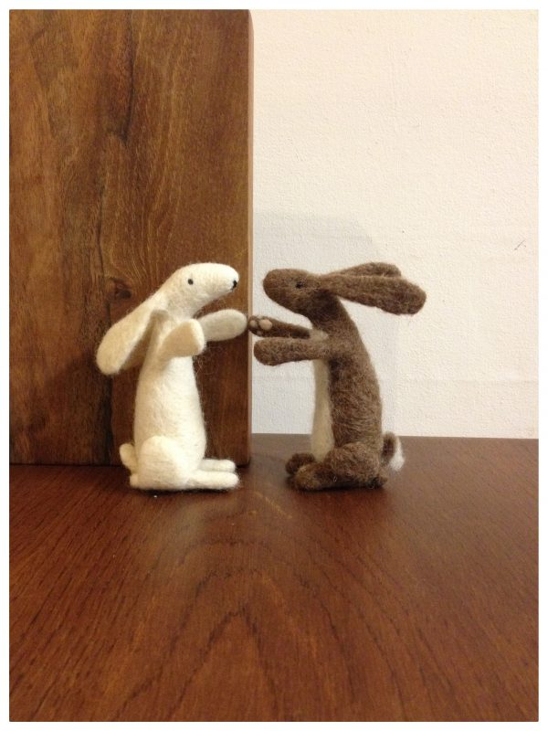 Brown and White Hares